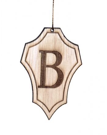 #1 Beta Shield